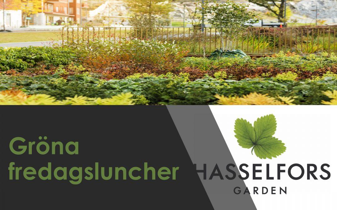 Gröna fredagsluncher –  Stockholm hösten 2019